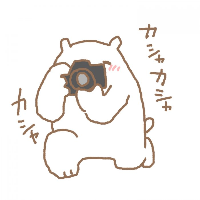 カメラマンくま